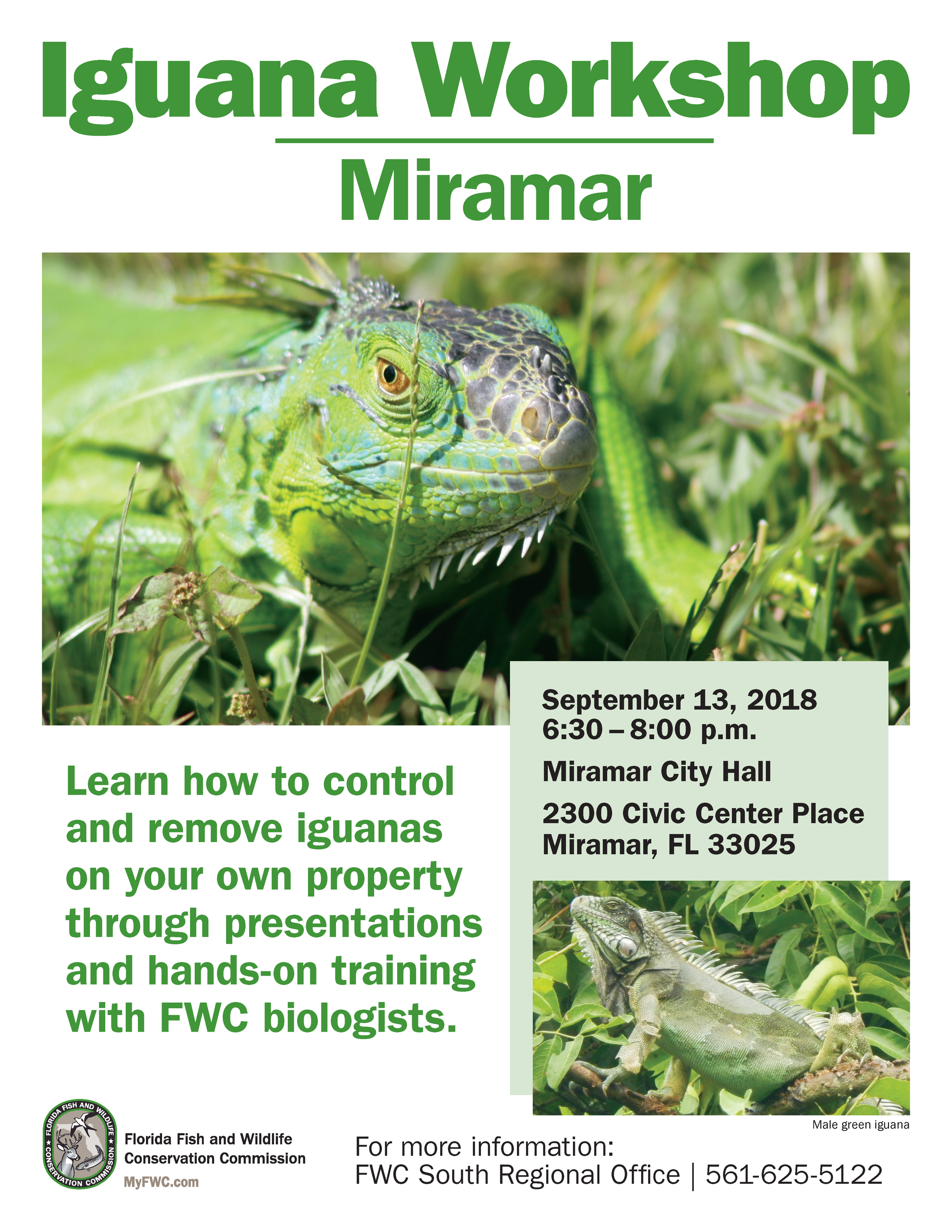 Iguana_Workshop_Flyer_Miramar32